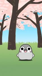 Android端末向けアプリ「ぺそぎんライブ壁紙「桜」」